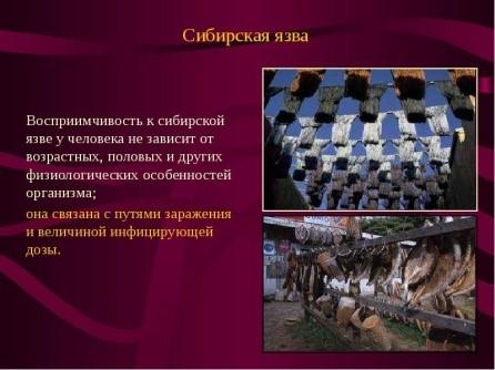 https://presentacii.ru/documents_2/68dd3ca9b384e4f23df1a984234bc44f/img10.jpg